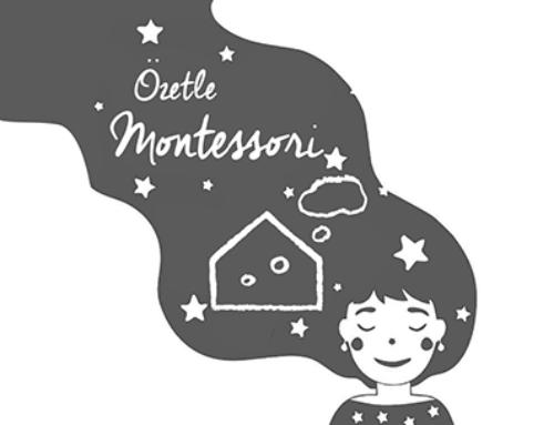 Özetle Montessorinin Temeli